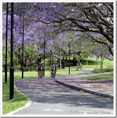 CyclistsPathIMG_0703